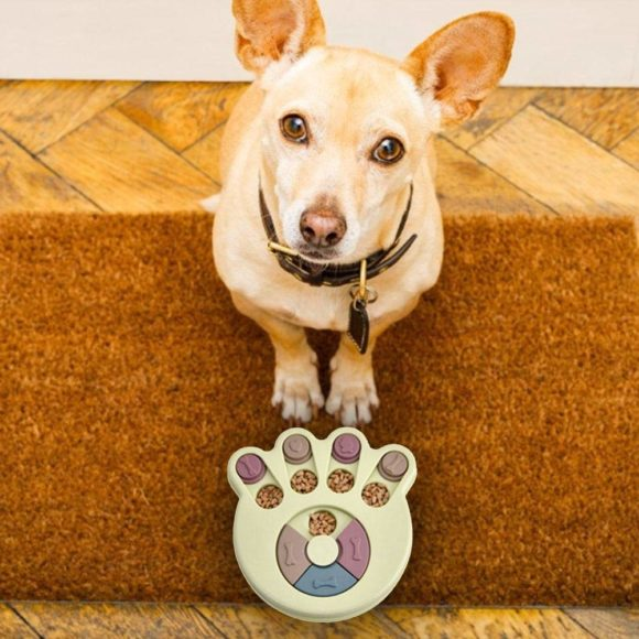 jeu intelligence chien friandises