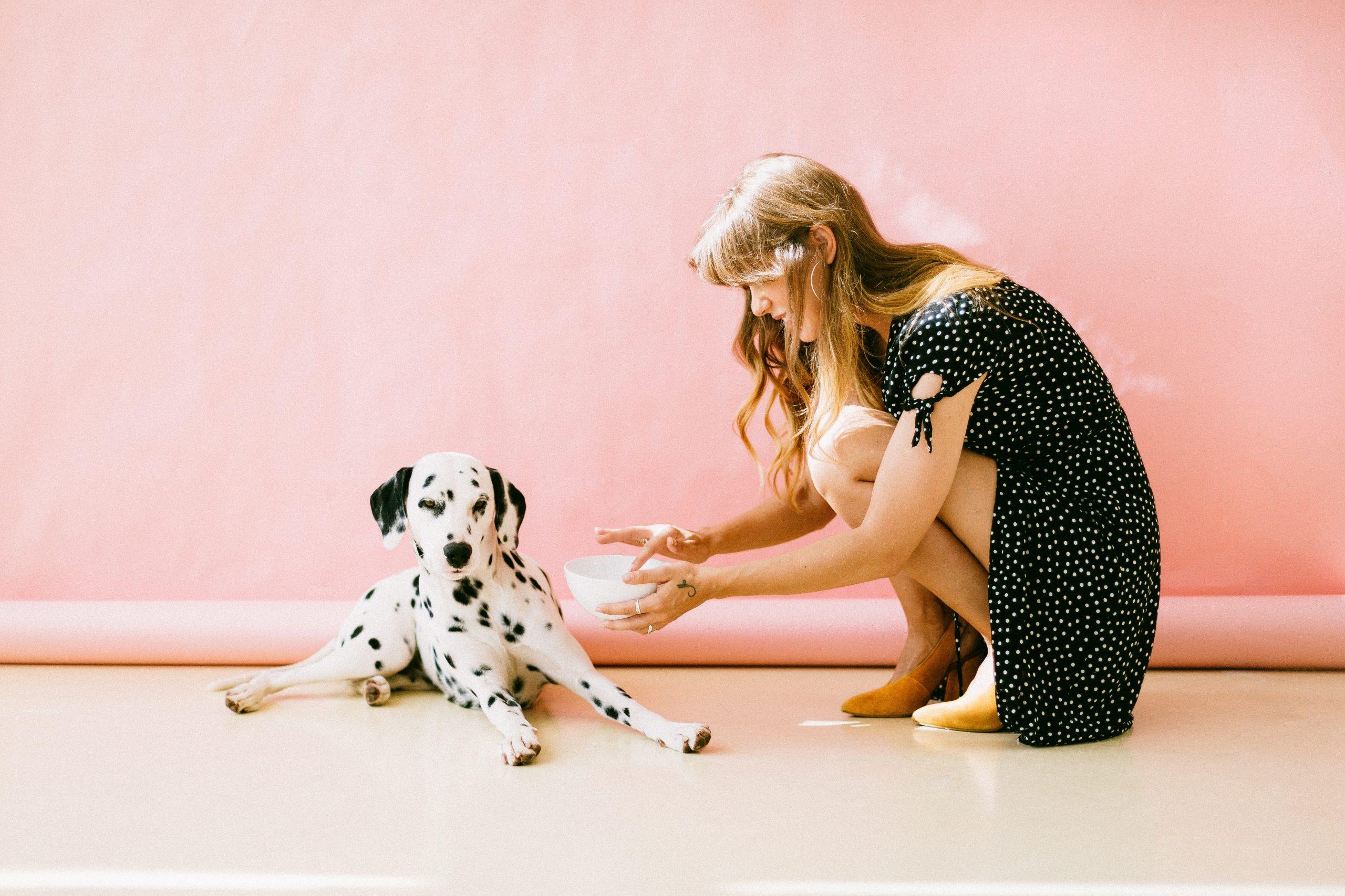 alimentation du chien naturelle