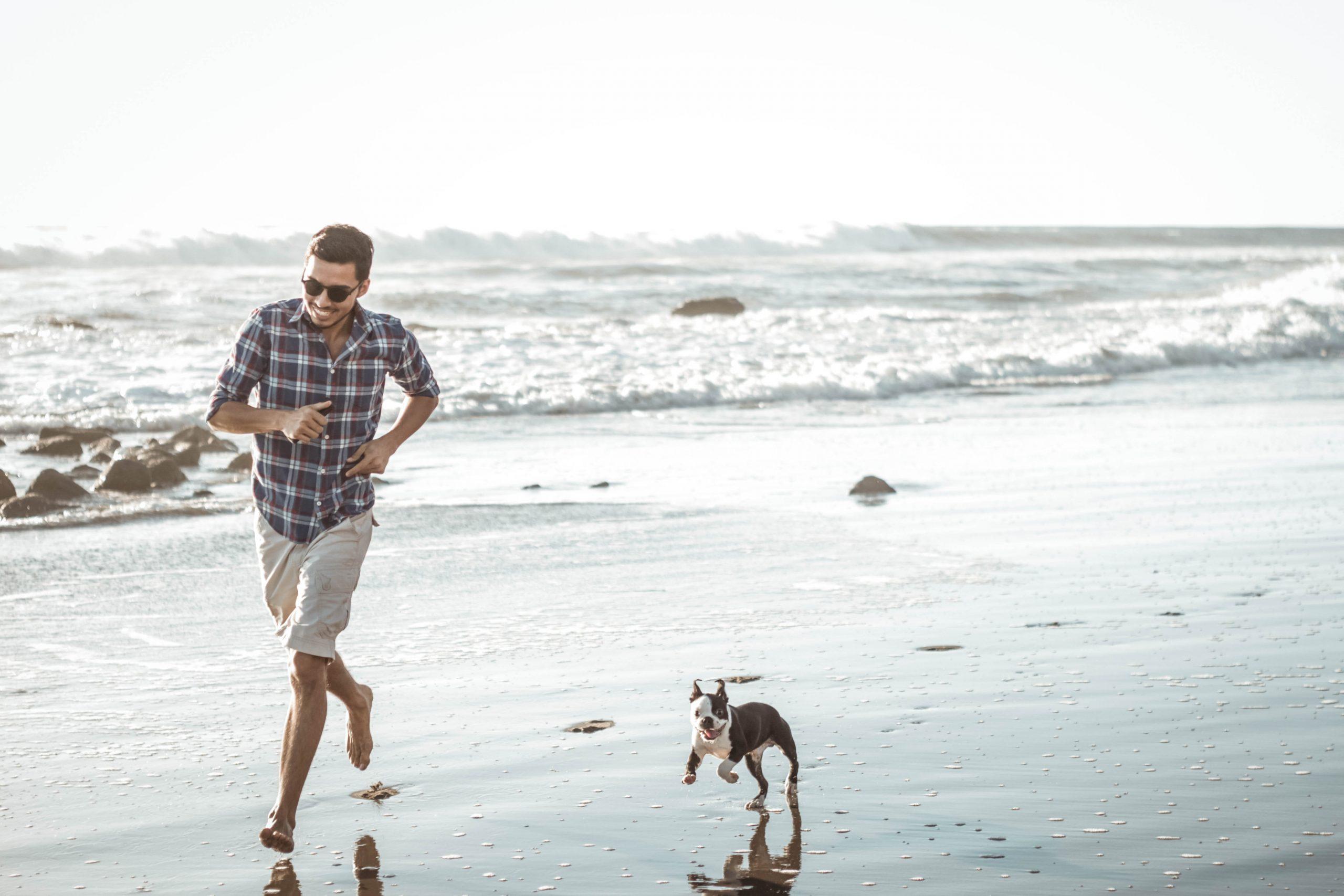 plage France 2020 avec chien