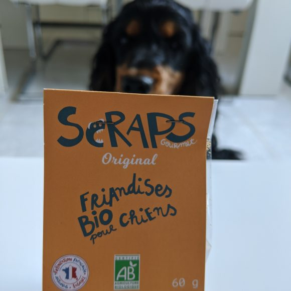 test friandises bio pour chiens