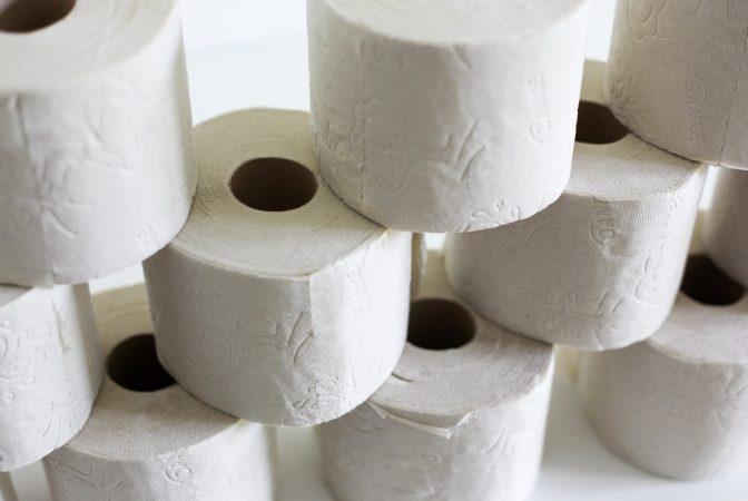 jeu chien papier toilette