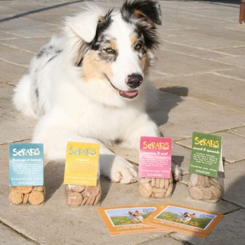 friandises bio pour chien made in france